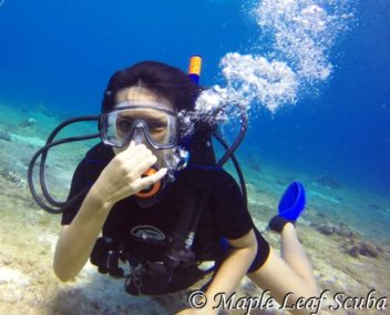 PADI Open Water Scuba Diving Certification in Cozumel with Maple Leaf Scuba