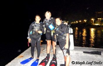 Night diving in Cozumel with Maple Leaf Scuba divers