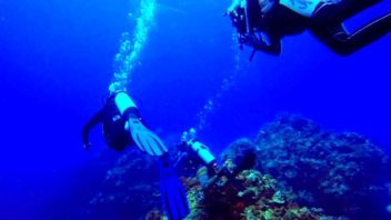 Divers diving at Palancar Horseshoe reef in Cozumel