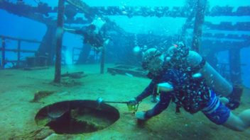 Diving the C53 Wreck of the Felipe Xicotencatl with Maple Leaf Scuba in Cozumel, Mexico