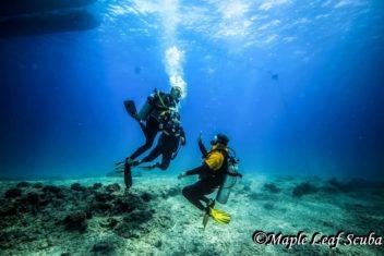 PADI Rescue Diver Course at Villa Blanca in Cozumel with Maple Leaf Scuba