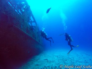 C-53 Ship Wreck in Cozumel with Maple Leaf Scuba