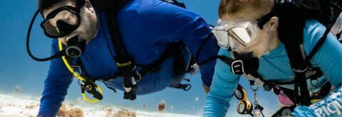 Cozumel Scuba Diving Daily Dive Trips
