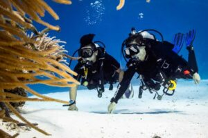 Two divers hiding behind coral on a drift dive
